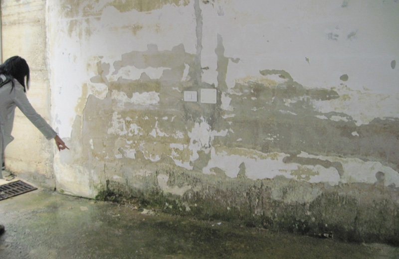 umidità alle pareti dello scantinato nella palazzina di via dei Castani