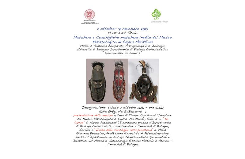 Per il Museo Malacologico di Cupra importante collaborazione con l'Università di Bologna