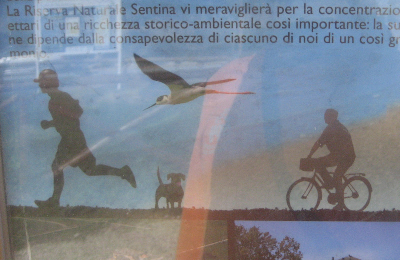 Cartello alla Sentina: c'è disegnato un cane, quasi ad invitare a portarli lì...