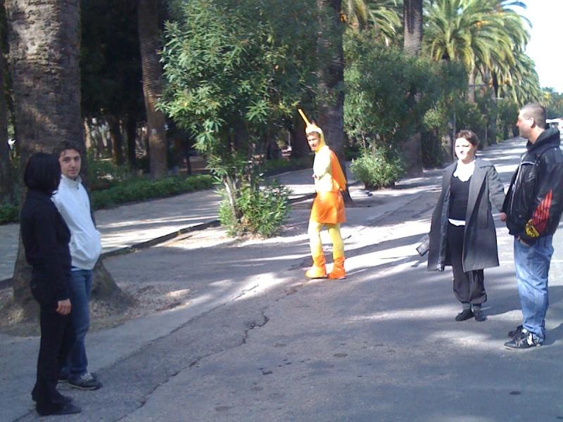 Capitan Ventosa a San Benedetto, mercoledì mattina, per un servizio sulle palme malate di
