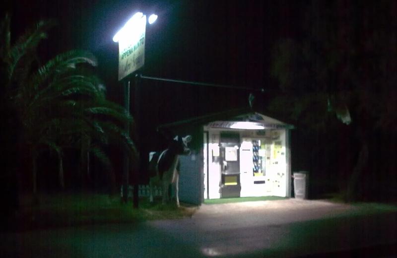 Illuminazione pubblica spenta in alcune strade di Martinsicuro (Foto Città Attiva)