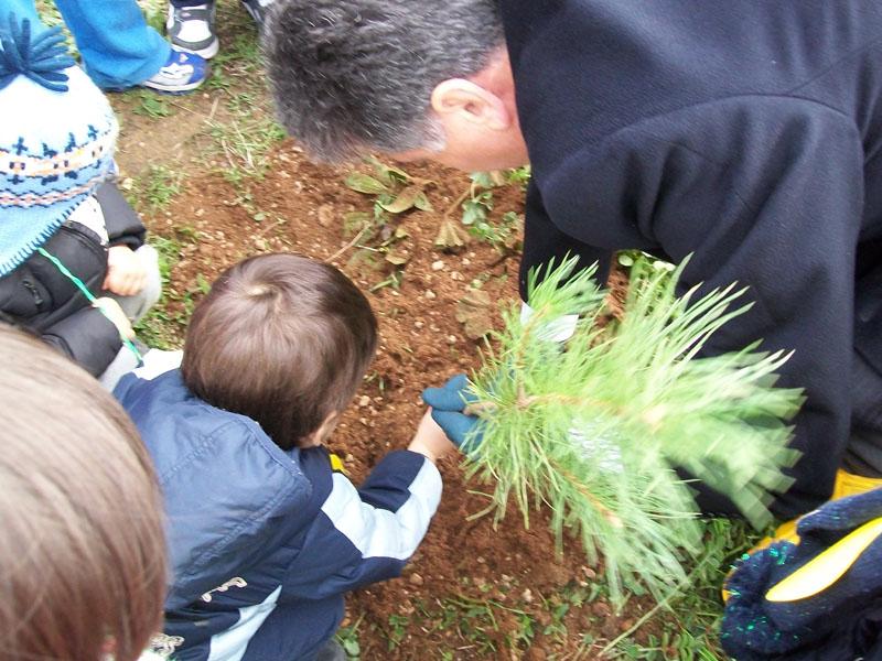 Festa dell'albero al parco dell'allegria