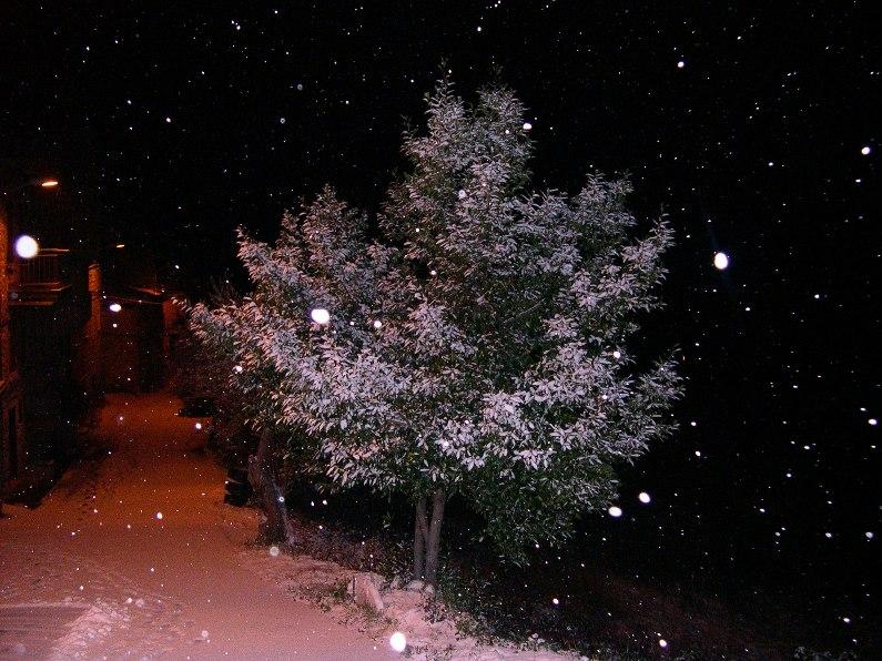 14 dicembre 2010, a San Vito di Acquasanta già diversi centimetri di neve
