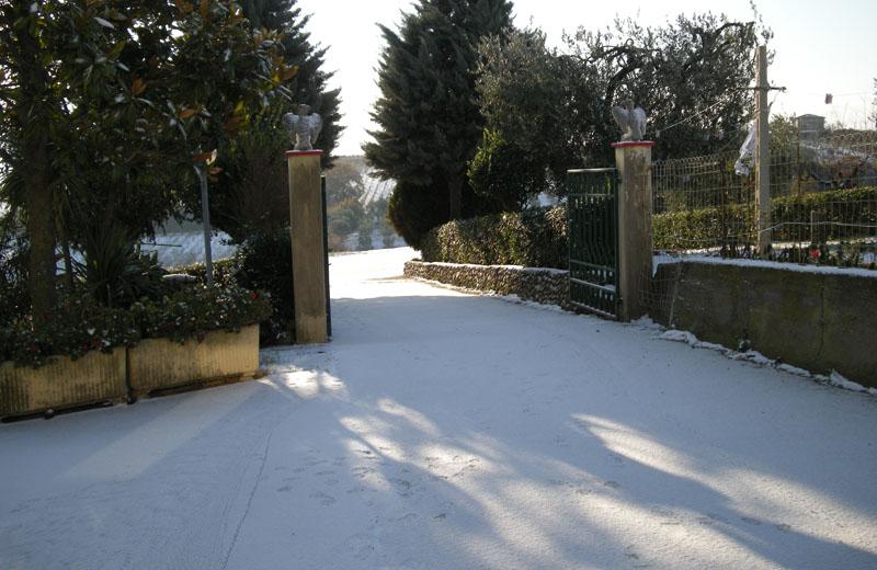 Neve il 16 dicembre 2010 nelle colline di Cupra