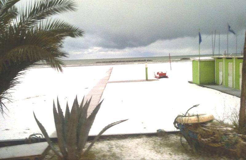 14 dicembre, neve sulla spiaggia di San Benedetto