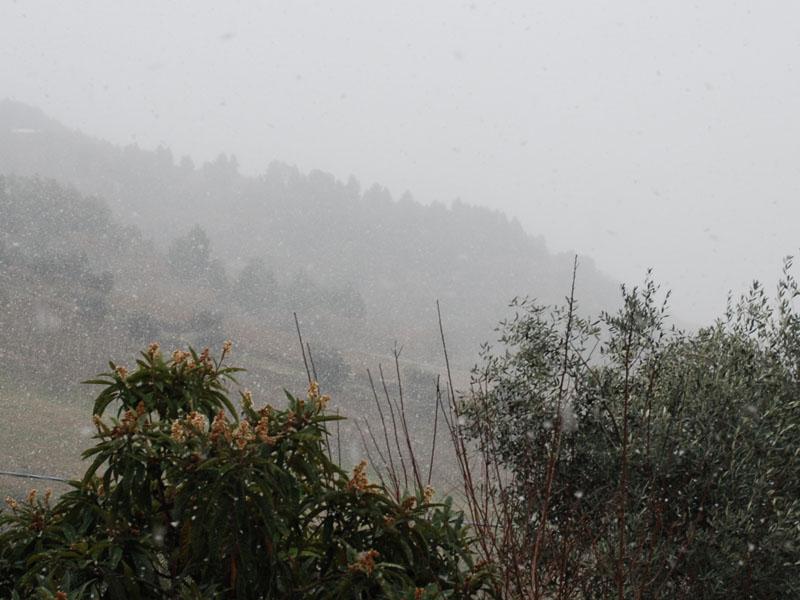 15 dicembre 2010, neve in Valtesino, ore 11:30