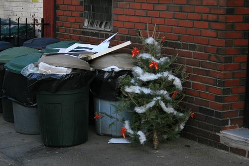 Gli scarti delle festività natalizie