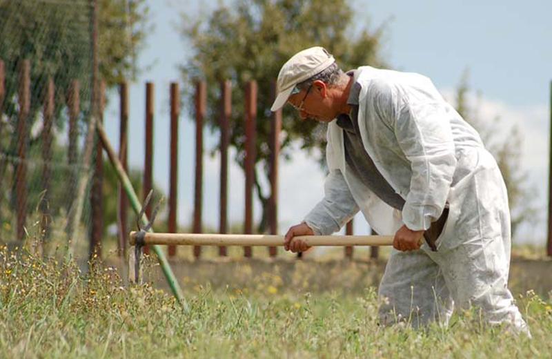 Un lavoratore