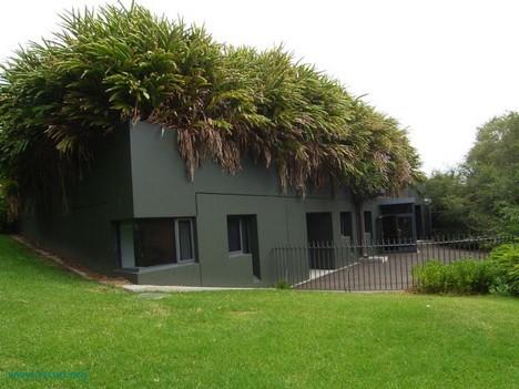 Edilizia sostenibile: tetto verde