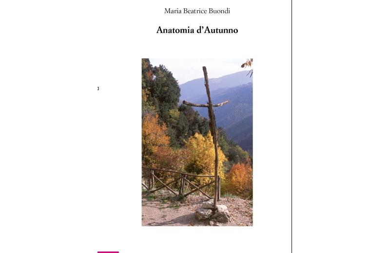 Anatomia d'Autunno, copertina