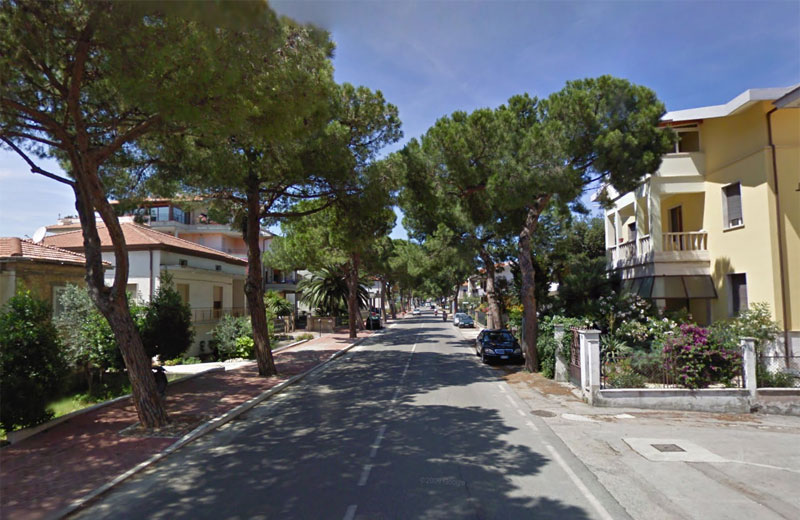 Pini in via Roma a Martinsicuro (foto google)