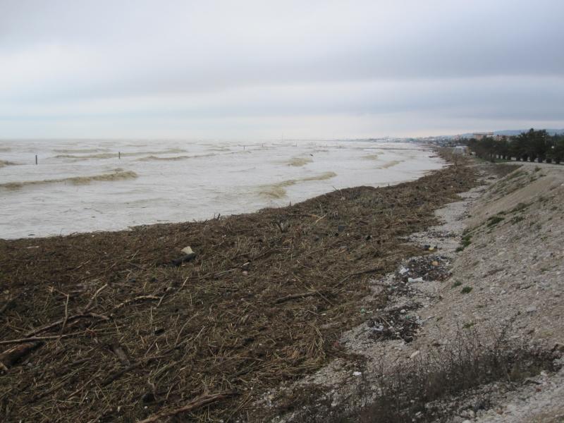 Alluvione di marzo: il Torrente Tesino in piena. Il lungomare nord di Grottammare invaso dai destriti