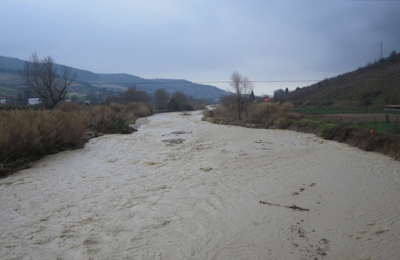 Torrente Tesino in piena