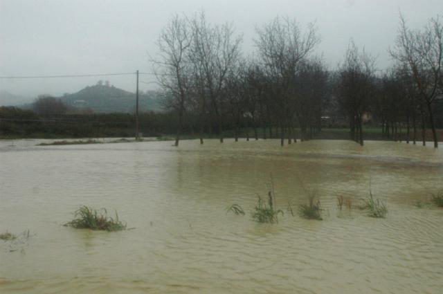 Villa Santi, campagna inondata martedì pomeriggio (foto Troiani)