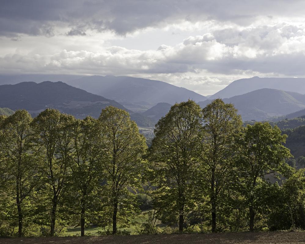 Green economy, finanziamenti dalla Regione