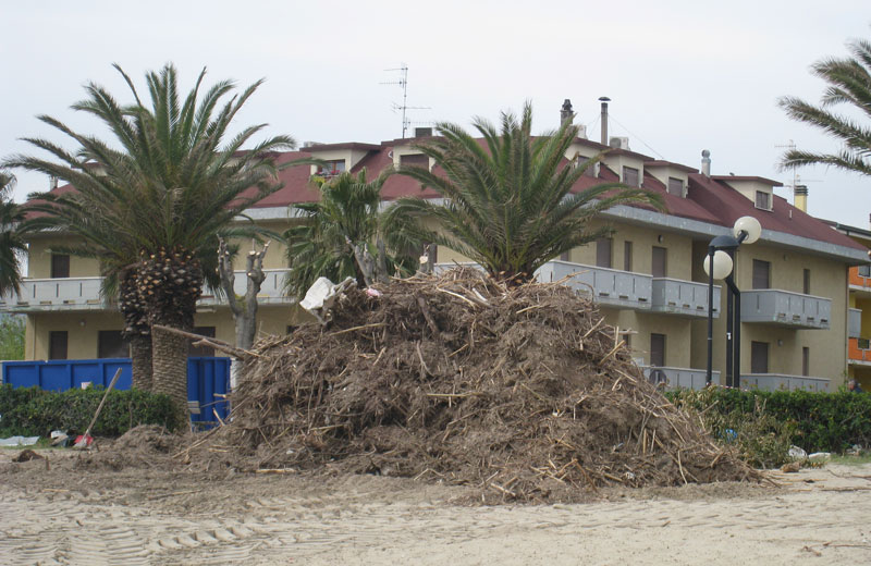 Detriti sulla spiaggia di Martinsicuro