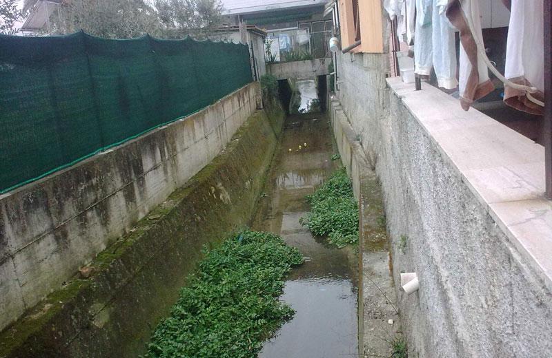 Il canale che costeggia via Colombo (foto Città Attiva)