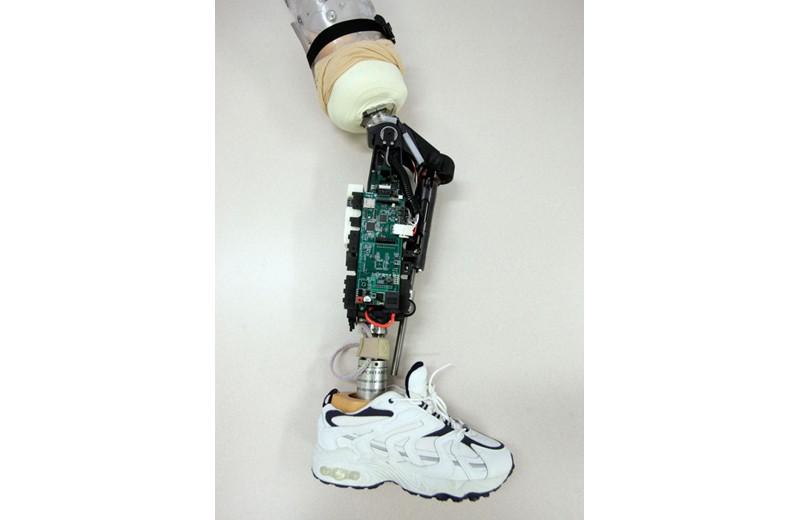 La Gamba bionica