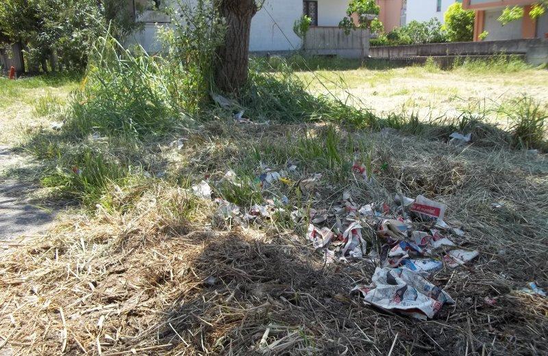 Cartacce che ricoprono tutti i prati di Via Legnano