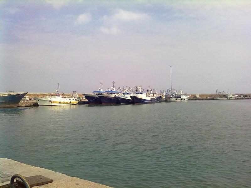 Pescherecci in porto a San Benedetto (foto d'archivio)