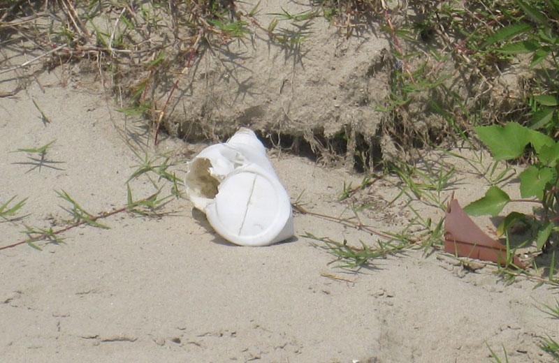 Rifiuti sulla spiaggia di Martinsicuro