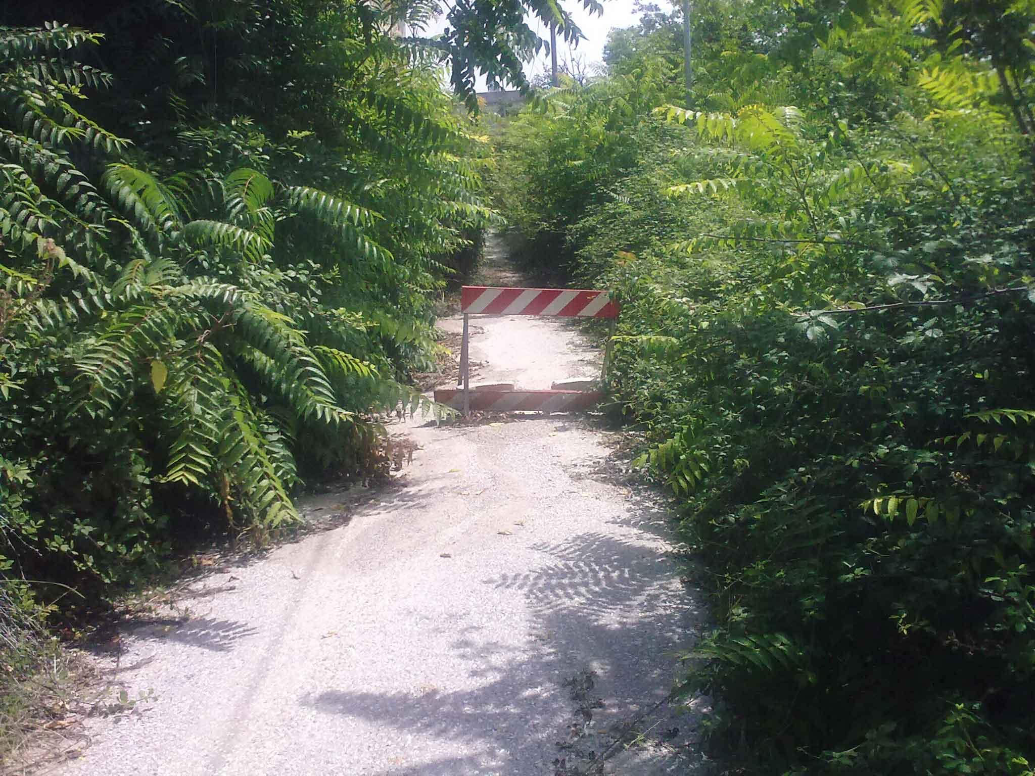 La strada di accesso all'edificio prima del taglio della vegetazione