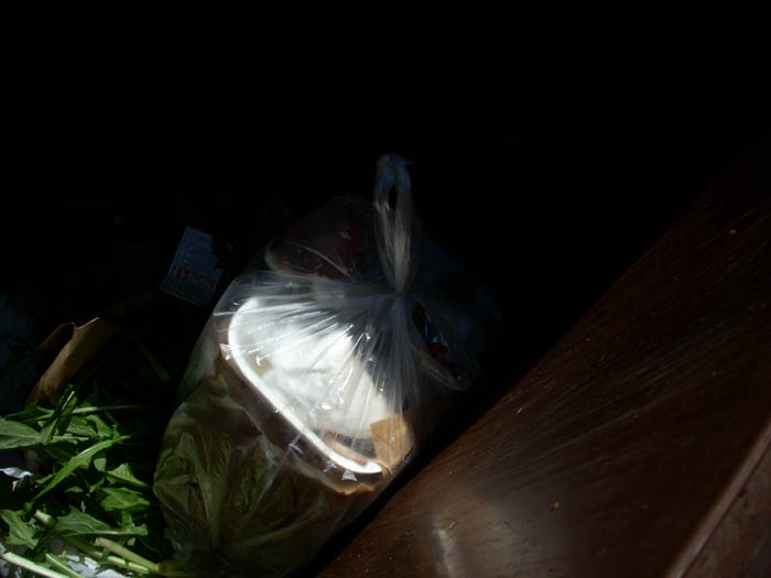 Umido, sacchetti di plastica nei bidoni