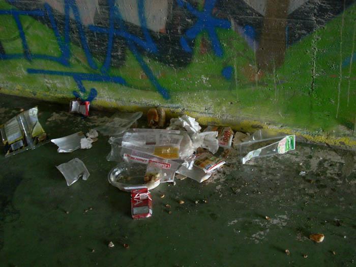 Pontino Lungo, degrado e sporcizia