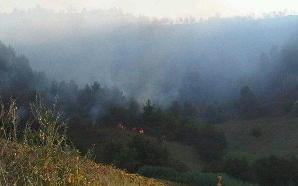 Incendio tra Ripatransone e Grottammare, 28 agosto 2011, foto Marco Orlandoni