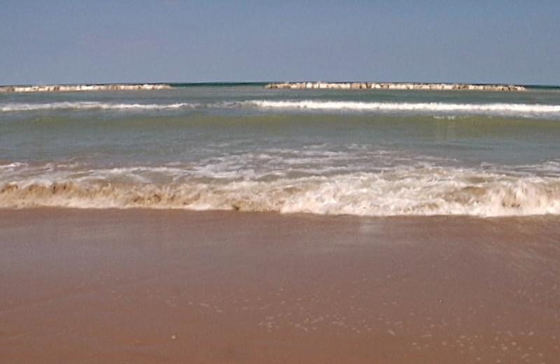 Acque marine melmose sul lungomare nord, martedì 9 agosto