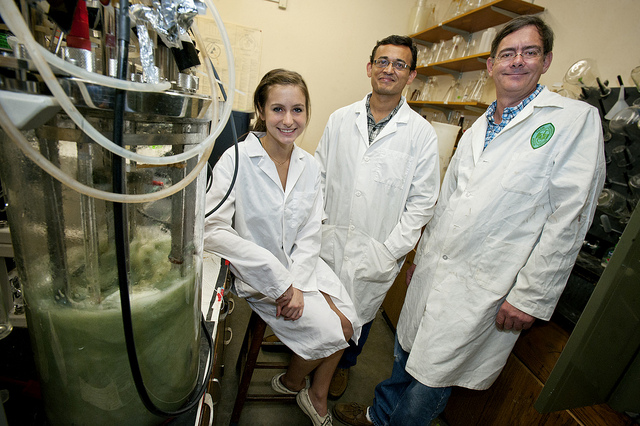 Scienziati dell'Università di Tulane [Foto: Paula Burch-Celentano]