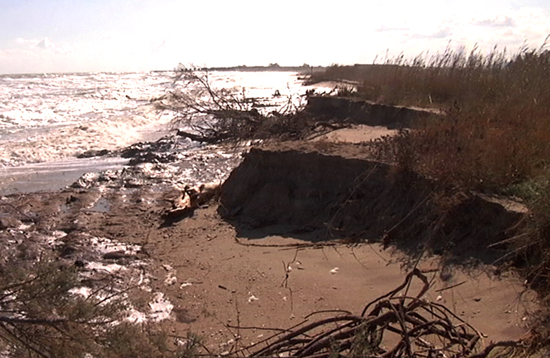 Erosione Riserva Naturale Sentina