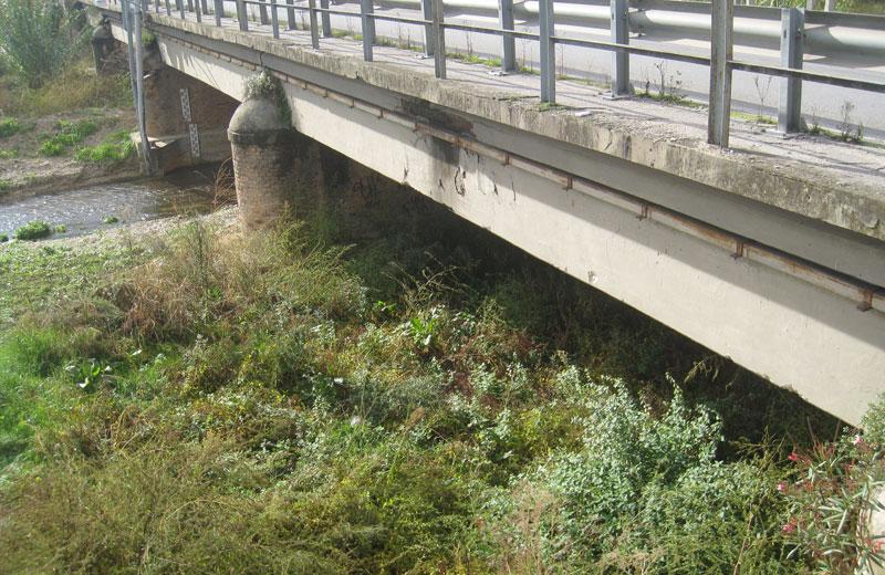 Vegetazione e sedimenti nell'alveo del Vibrata sotto il ponte di via Roma