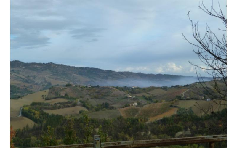 Sansificio Adriaoil: coltre di fumo in Valtesino
