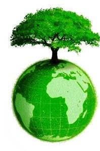 Green Economy - energia alternativa Fonte: google
