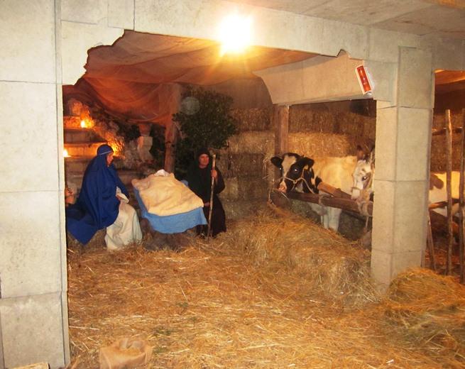 Presepe Vivente 2012 Grottammare  (86)