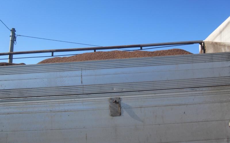 Sansificio Adriaoli, chiusura del 2 dicembre. La sansa esausta trasportata dai camion