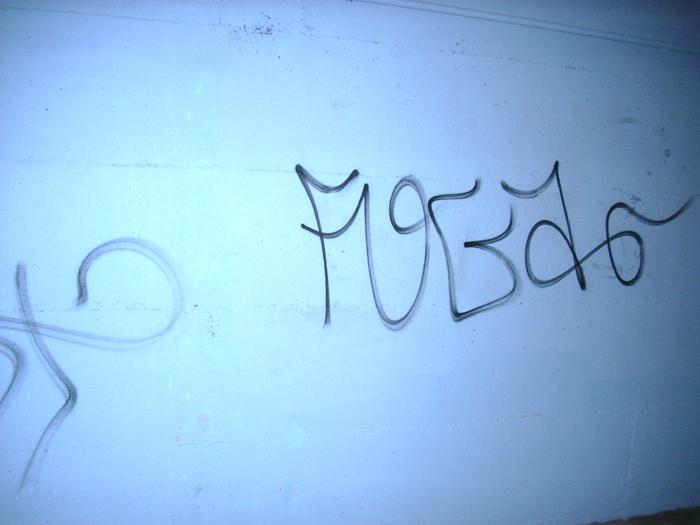 Nuovi graffiti nel Pontino Lungo