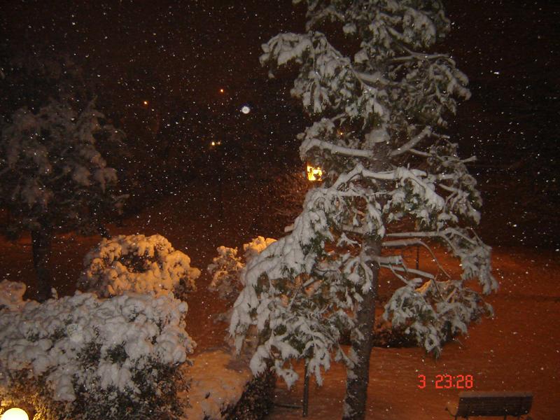 3 febbraio, neve a Centobuchi, da Ciardi 1