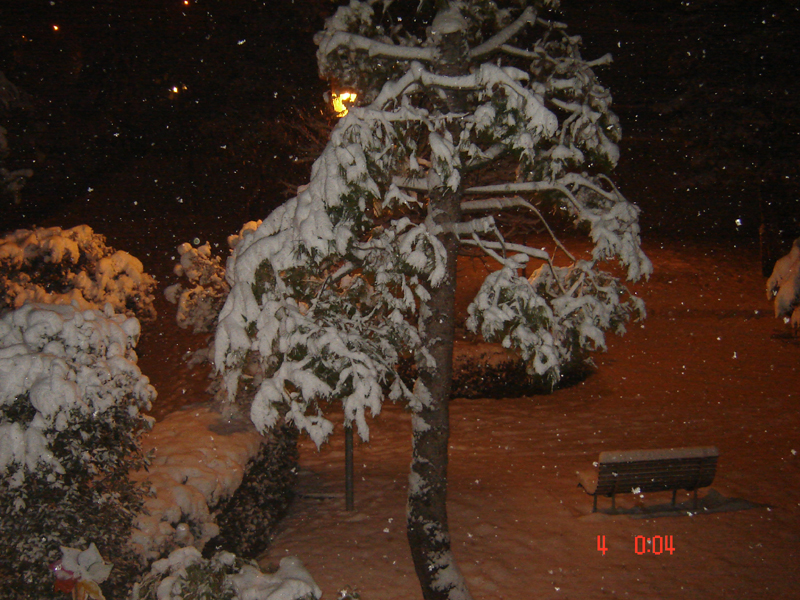 3 febbraio, neve a Centobuchi, da Ciardi 4