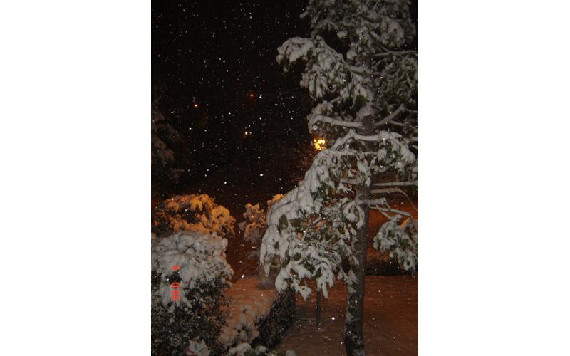 3 febbraio, neve a Centobuchi, da Ciardi 5