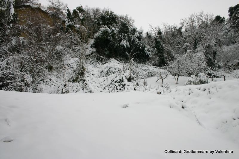 4 febbraio, foto di Katy Scolastici, Grottammare 4
