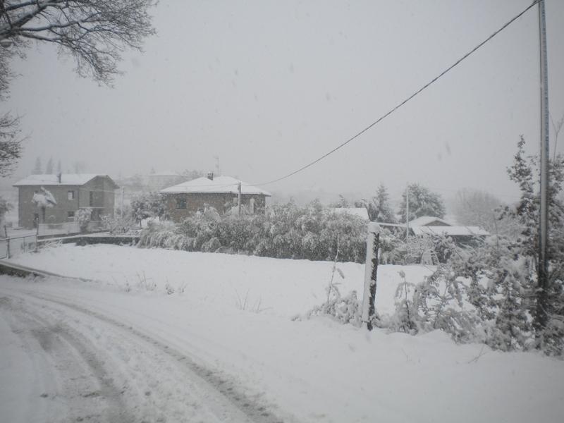 4 febbraio, neve, Filippo Guerrieri 2