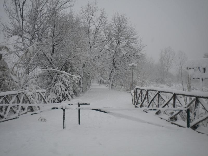 4 febbraio, neve, Filippo Guerrieri 3