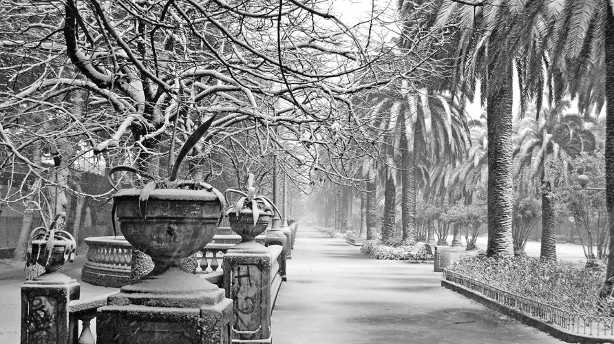 4 febbraio. Corso di San Benedett come un'opera d'arte, con la neve (marco ripani)