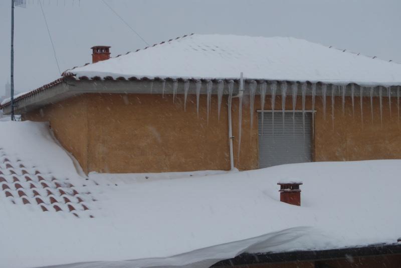 Neve ad Acquaviva Picena, 5 febbraio 2012 (Erika Corradetti)