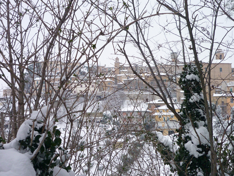 Colonnella innevata, foto di Manuela, 5 febbraio