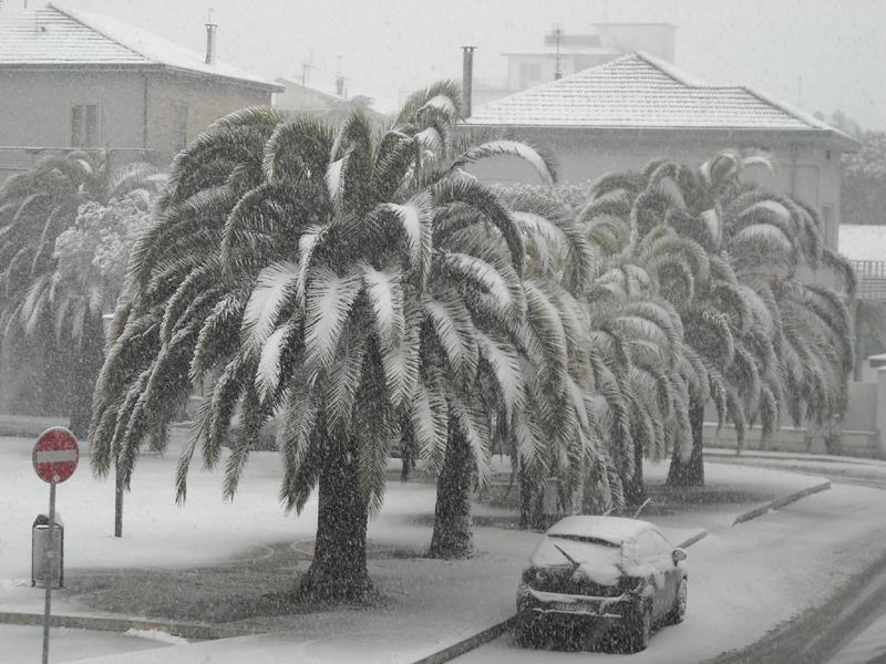 Alfredo Voltattorni neve 4 febbraio piazza del redentore pda