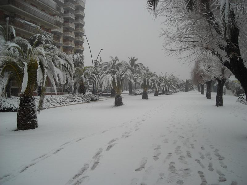 Alfredo Voltattorni neve 4 febbraio viale europa
