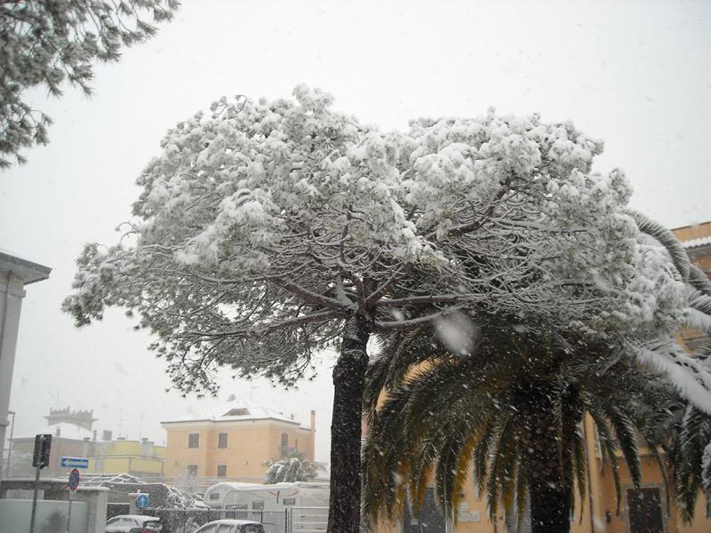 Alfredo neve Porto d'Ascoli 4 febbraio